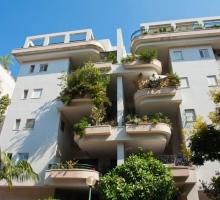 Veja como fazer e cuidar de um jardim em apartamento